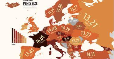 Infografika: délka penisů v Evropě
